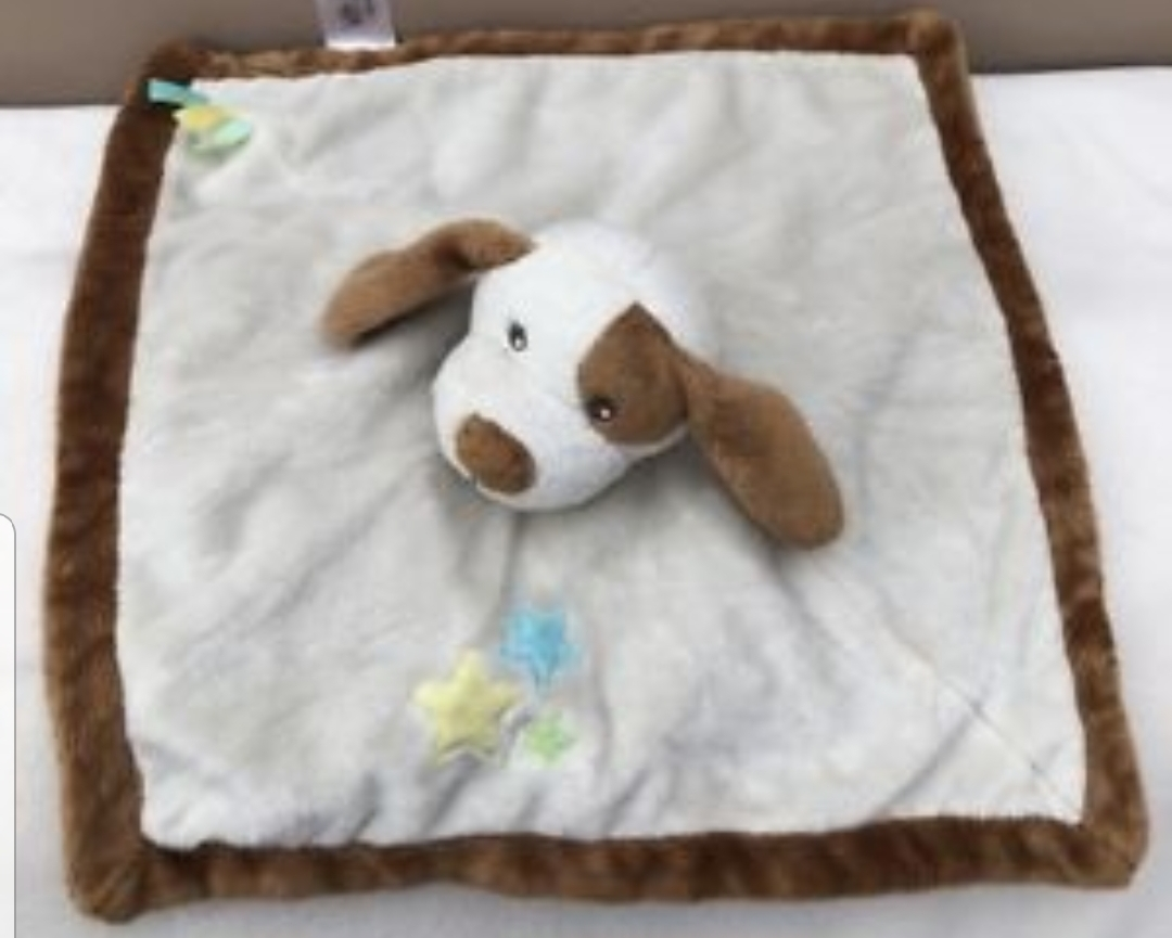 Lost: Brown and white dog baby comforter teddy lost round seafront area or possibly burger king strip